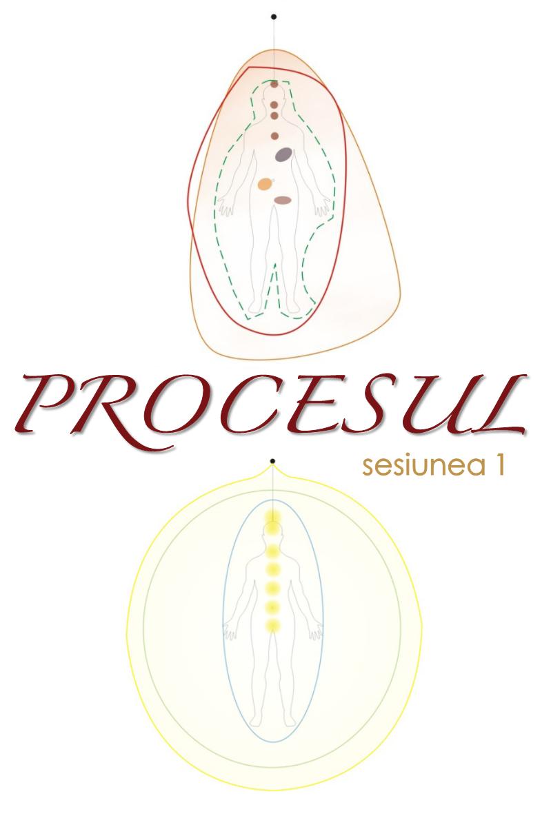 Procesul-sesiunea-1